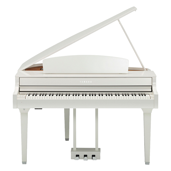 barker 39 s music modesto california piano music instument sales rentals and lessons. Black Bedroom Furniture Sets. Home Design Ideas